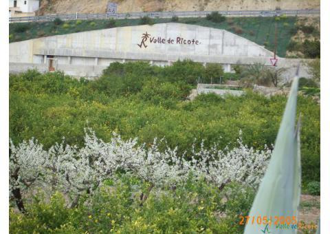 Turismo Valle de Ricote