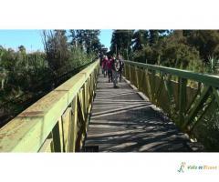 Ruta Vicente Medina