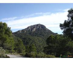 Pozos de la Nieve(Sierra de la Pila)