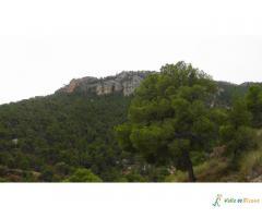 Sierra del Oro